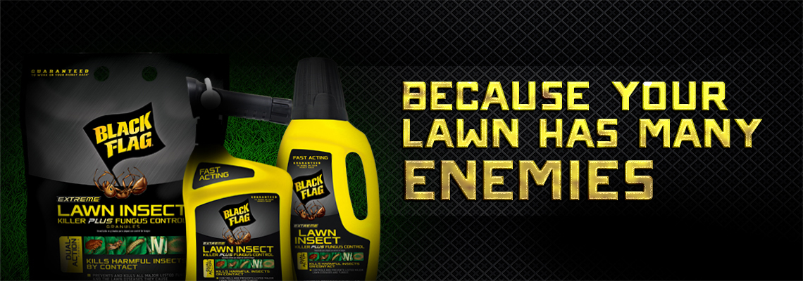 Because Your Lawn Has Many Enemies