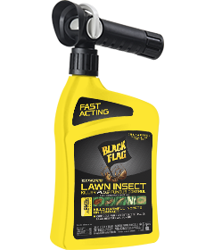 Extreme Lawn Insect Killer Plus Fungus Control (Ready-to-Spray)