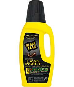 Extreme Lawn Insect Killer Plus Fungus Control (Concentrate)