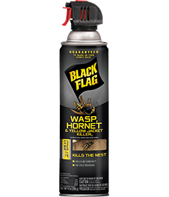 Wasp, Hornet & Yellow Jacket Killer2 (Aerosol)