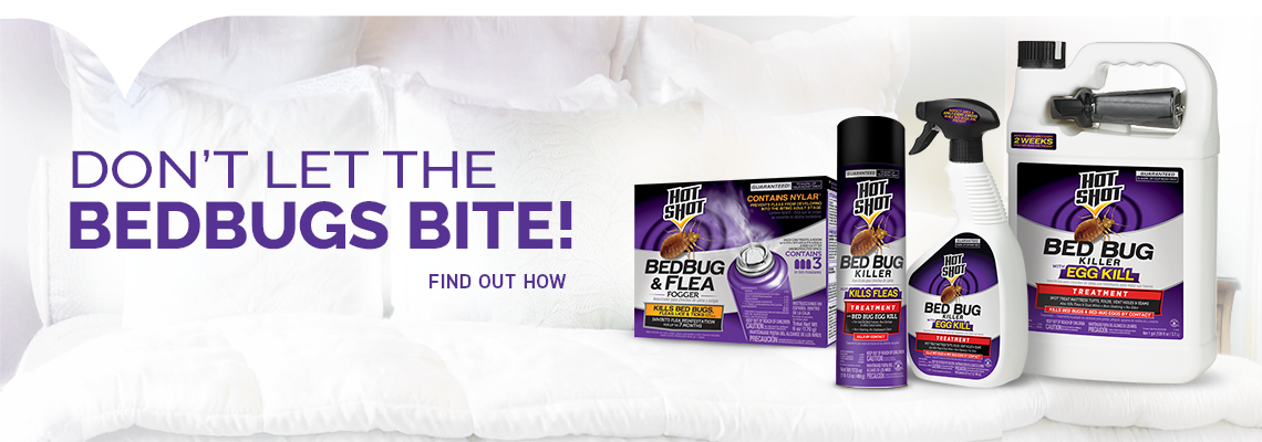 Bed Bug Products