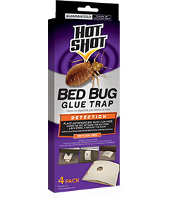 Bed Bug Killer With Egg Kill Ready To Use Hot Shot