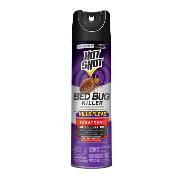 Bed Bug Killer (Aerosol)