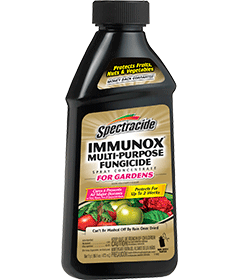 Spectracide Immunox Multi-Purpose Fungicide Spray Concentrate for Gardens