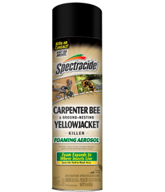 Spectracide Carpenter Bee and Ground-Nesting Yellow Jacket Killer Foaming Aerosol