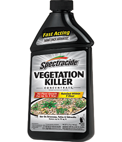 Spectracide Vegetation Killer Concentrate