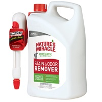 Stain and Odor Remover AccuShot
