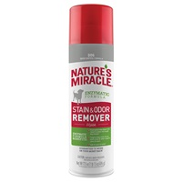 Stain and Odor Remover - Foam