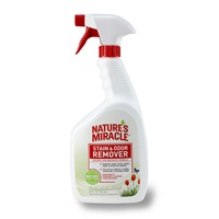 Stain and Odor Remover - Flowering Meadow Scent