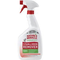 Stain and Odor Remover - Melon Burst Scent