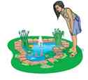There are a variety of pond shapes and sizes to consider when building a pond.
