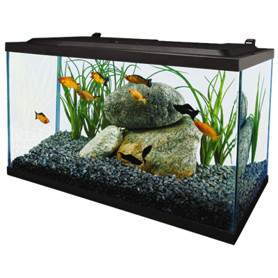 complete led aquarium kit 10 | tetra®