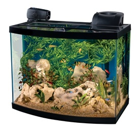 Tetra® Connect 28G Aquarium Kit