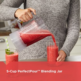 5-Cup PerfectPout Blending Jar