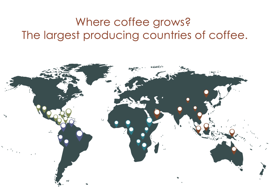 Coffee World Infographic