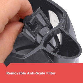 removable anti-scale filter