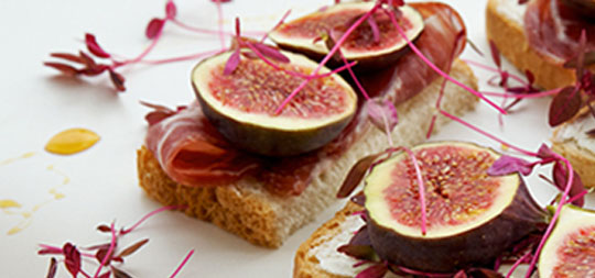 Fig Melon Prosciutto Panini