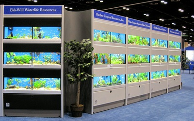 Commercial Aquarium Display Systems