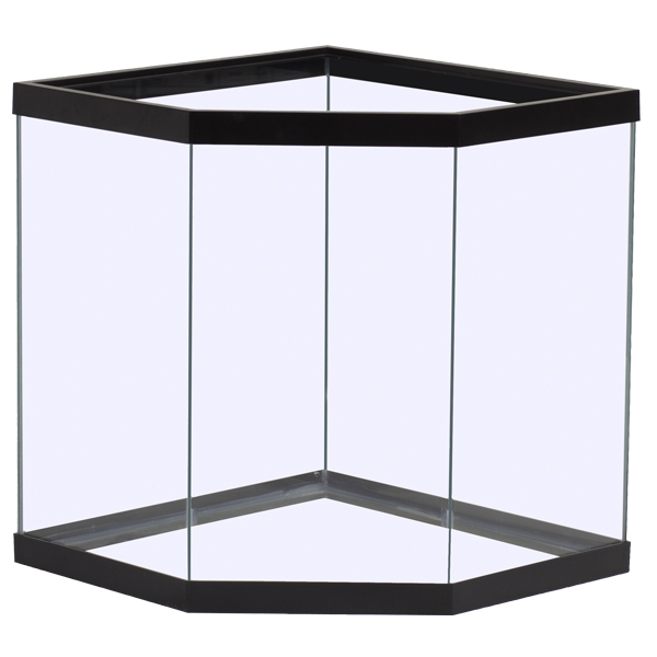Looking For A Corner Aquarium? Our Pentagon Glass Aquariums And Tanks Might  Just Be What