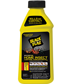 Extreme Home Insect Control Concentrate2 - Indoor Insect