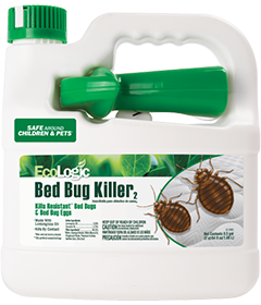 Bed Bug Killer (Ready-to-use)