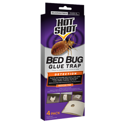 Hot Shot Bed Bug Glue Trap