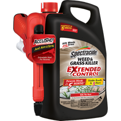 Spectracide Weed & Grass Killer with Extended Control (AccuShot Sprayer)