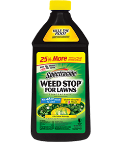 Spectracide® Weed Stop® For Lawns Concentrate2 | Spectracide