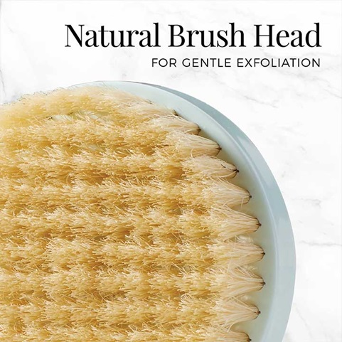 Natural Brush Head for Gentle Exfoliation | SP-BB2B