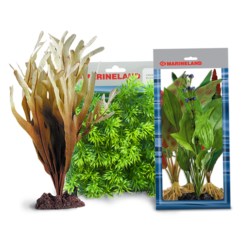 Plants and Accessories | Marineland®