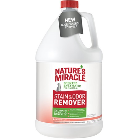 Stain And Odor Remover For Cats Melon Burst Scent
