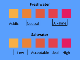Ideal Range For Healthy Freshwater Aquarium Community Fish Prefer 6 8 To 7 Depending On Species R 4