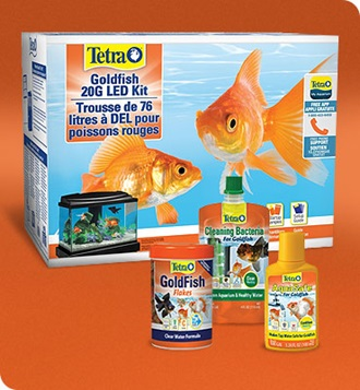 Tetra Goldfish Program