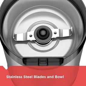Stainless steel blades and bowl
