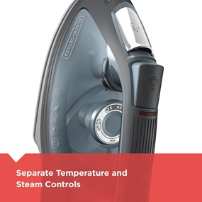 separate temperature and steam controls | IR3000